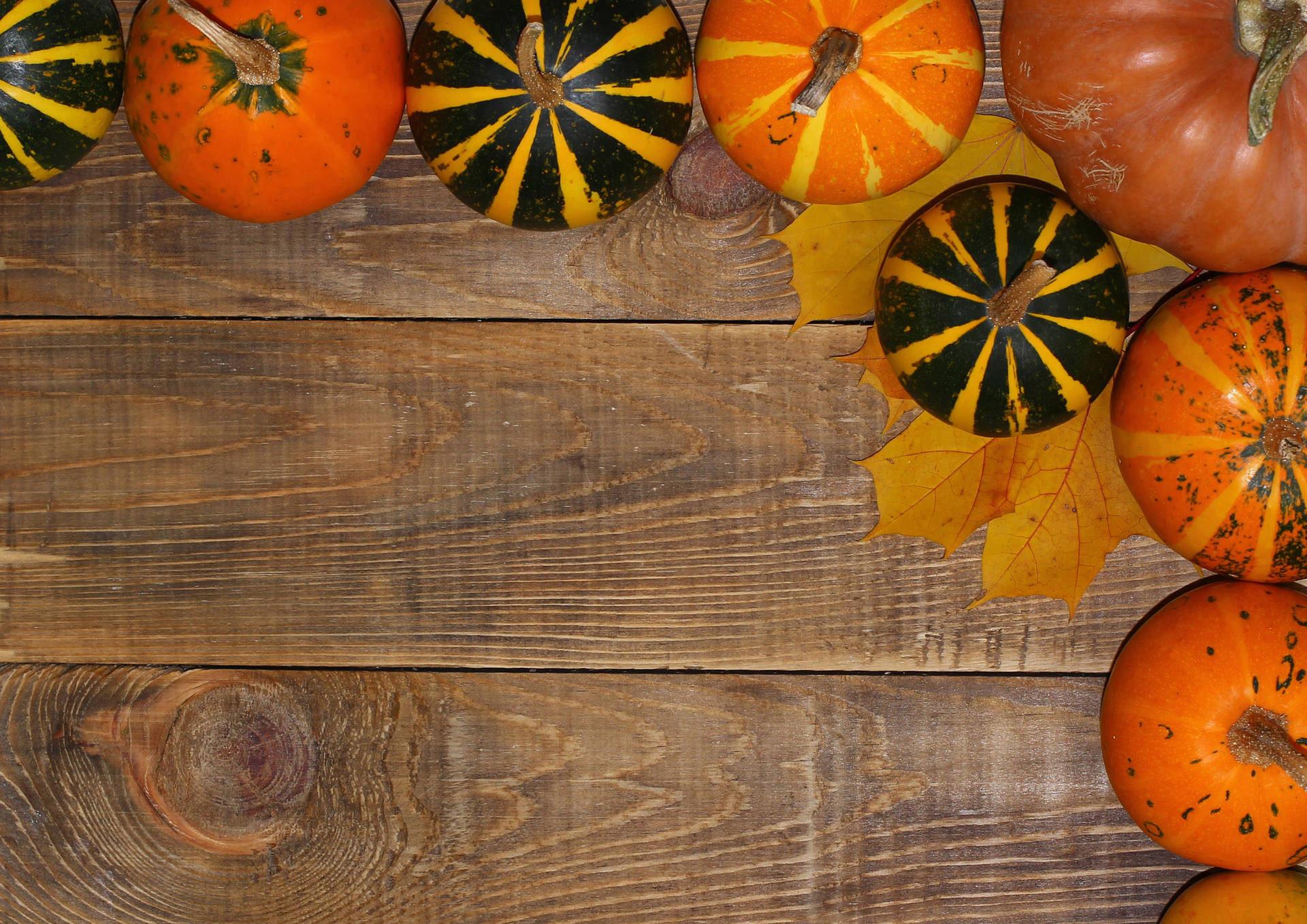 Autumn Background for October Digital Signage