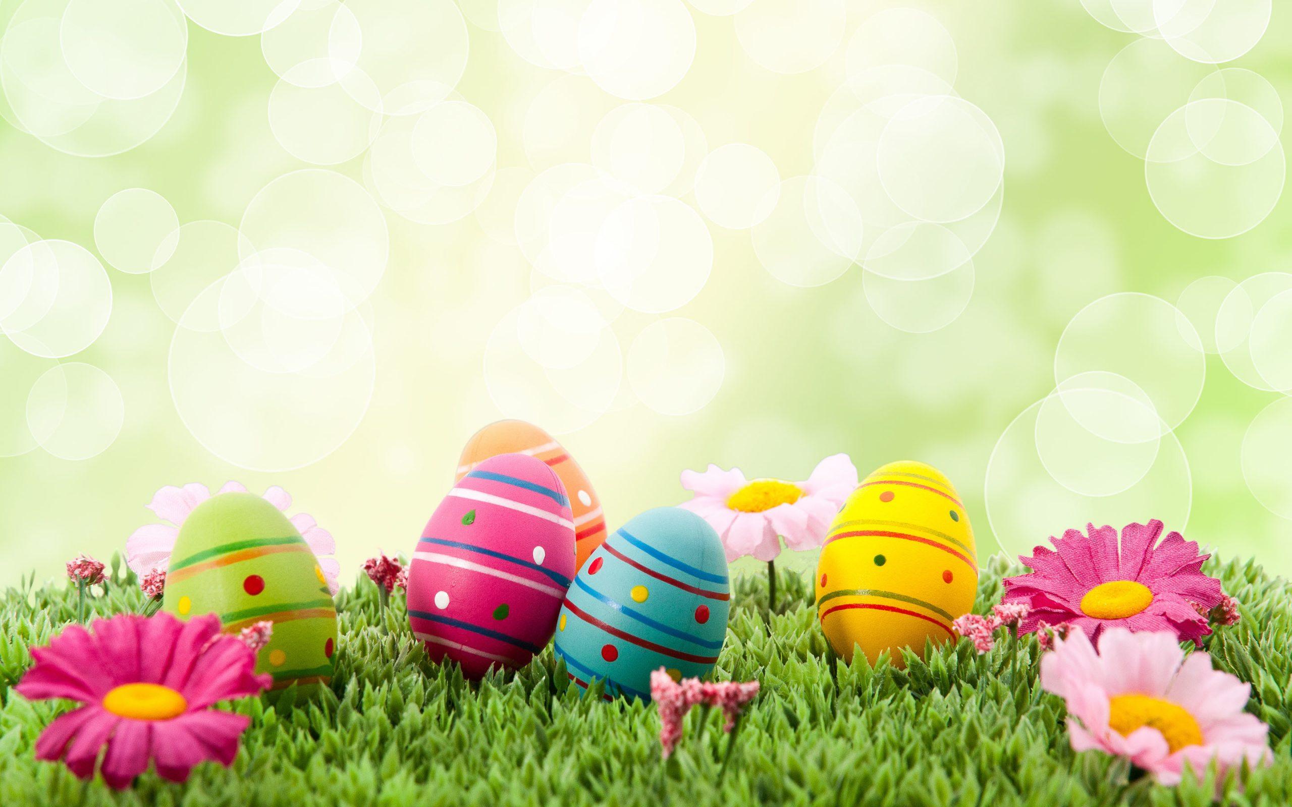 Easter Egg Background Image For April 2020 Digital Signage