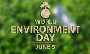 June 5 World Environment Day Digital Signage Graphic