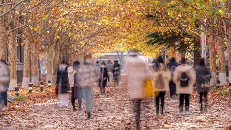 Fall Weather September 2021 Digital-Signage Digital Signage Content